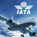 IATA upgrades importance of environment with senior appointment and new industry training programme